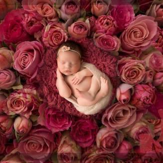 flower-baby